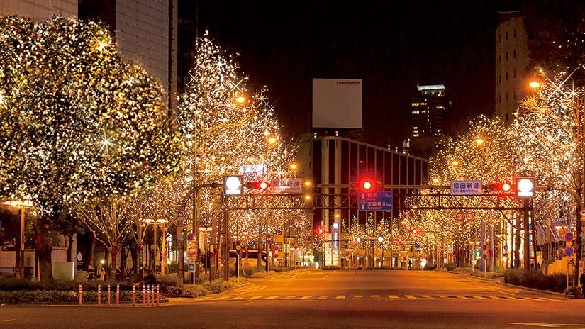 大阪御堂筋彩燈展2019|世界紀錄認證最多彩燈裝飾行道樹的道路
