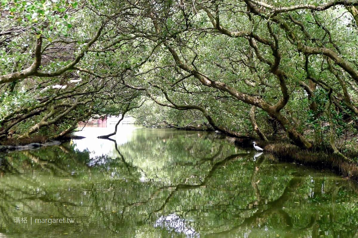 四草綠色隧道天使之吻。迷你亞馬遜河在台南|船班、預訂、船票 @瑪格。圖寫生活