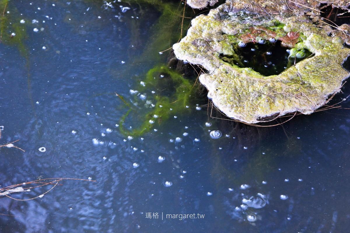 蘇澳。無尾港水鳥保護區|在大自然中翱翔的生態秘境