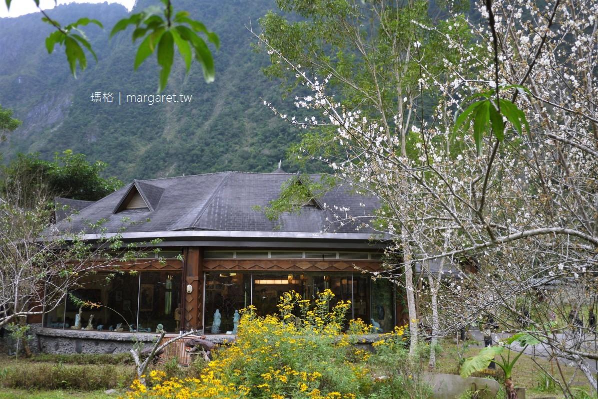 太魯閣國家公園。布洛灣山月村|花蓮天祥的梅花開了