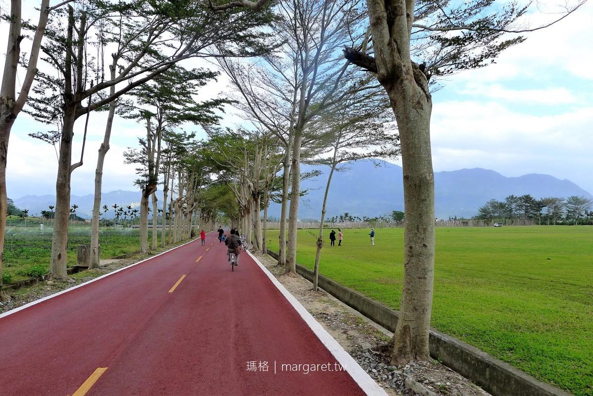 龍田大草坪、龍田自行車道|台東鹿野綠色隧道逍遙遊
