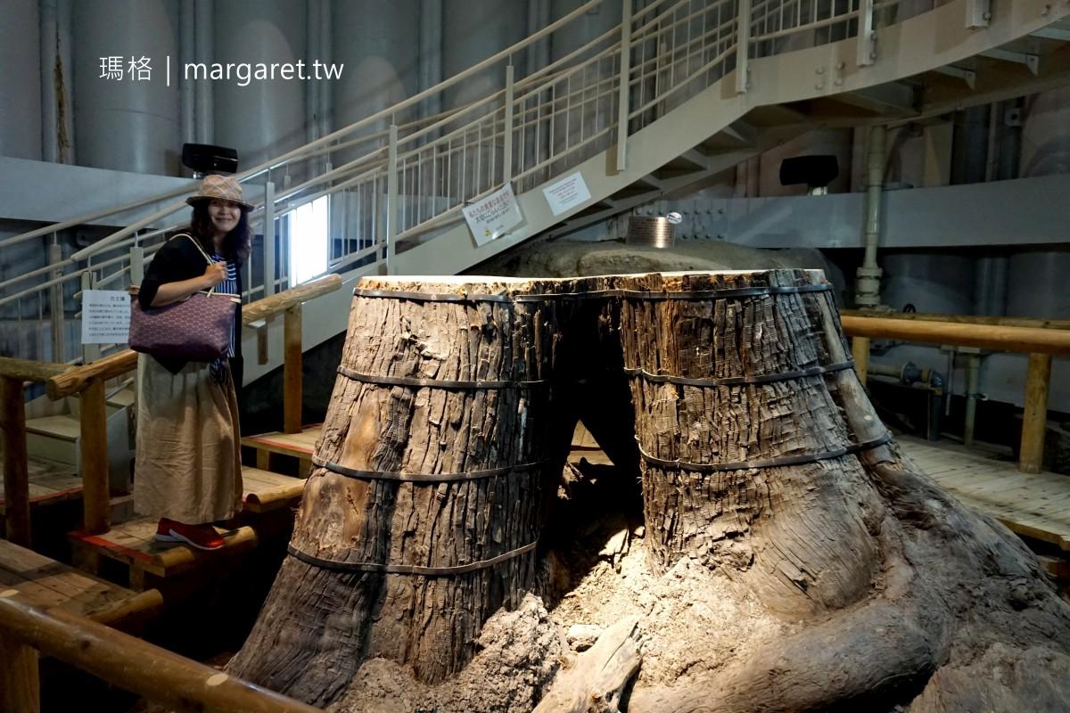 島根三瓶山景點。小豆原埋沒林公園|繩文時代瞬間被原貌封存的巨木林