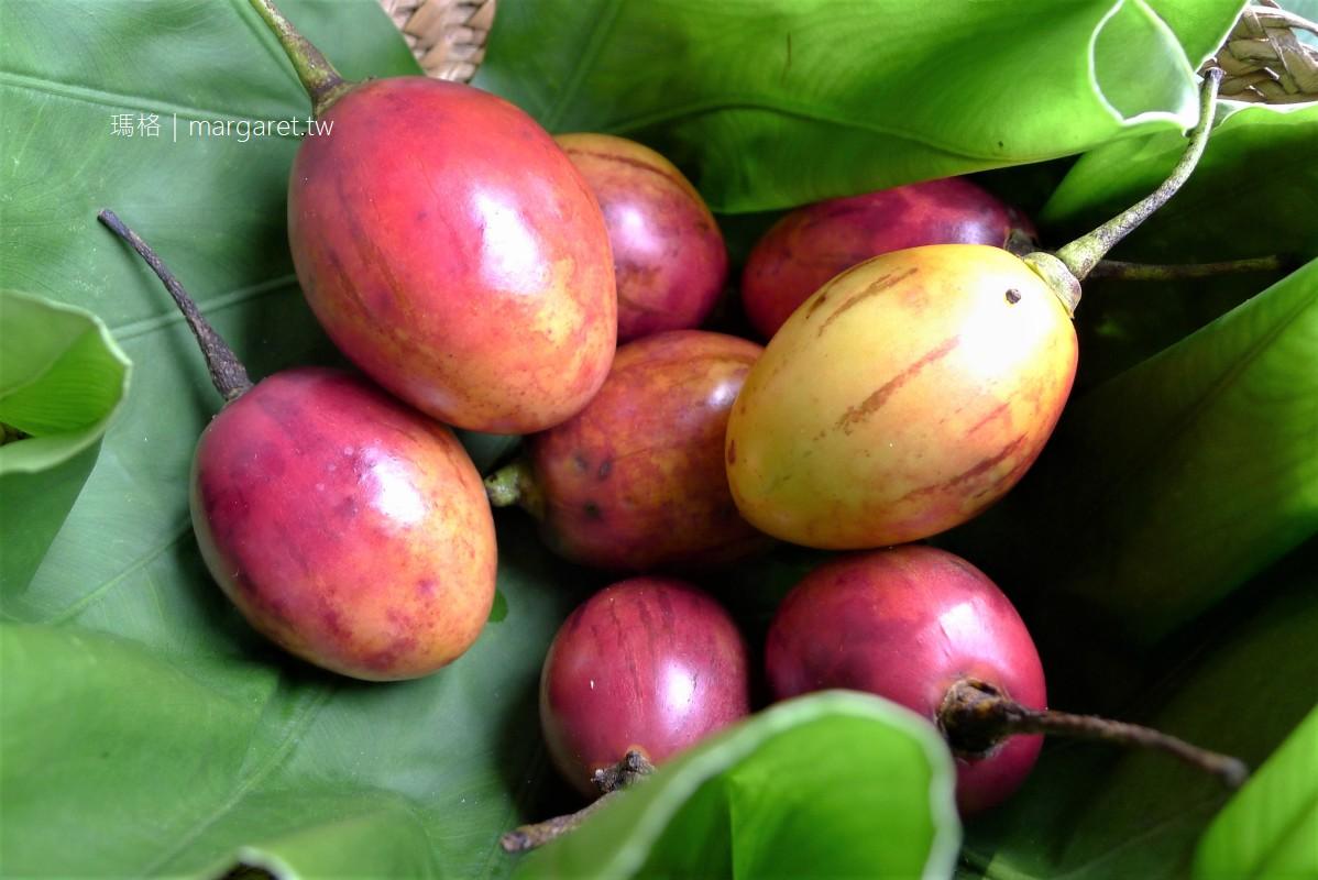 阿里山名產。樹番茄的滋味|營養、低卡、美味