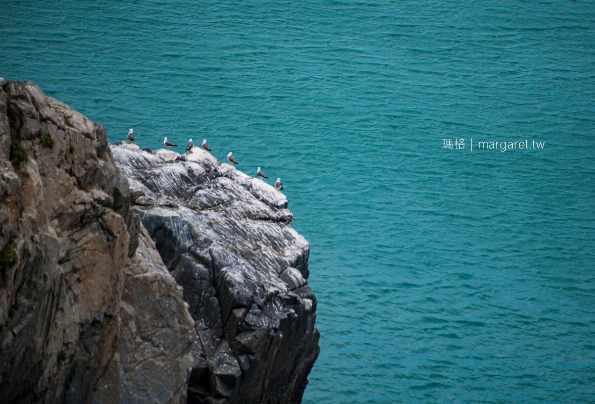 神話之鳥現身馬祖。黑嘴端鳳頭燕鷗全球僅存百隻|2020賞鷗季。交通票價
