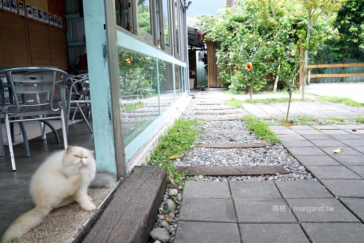 貓尾巴咖啡。花蓮銅門部落景觀咖啡館|店內養了10幾隻貓