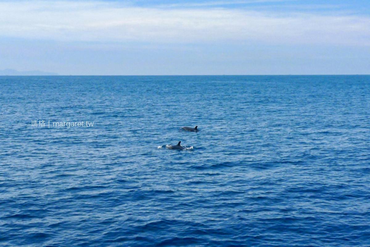 龜山島開放觀光20周年。賞鯨登島半日遊行程推薦|揭開牛奶海、無人島神秘面紗