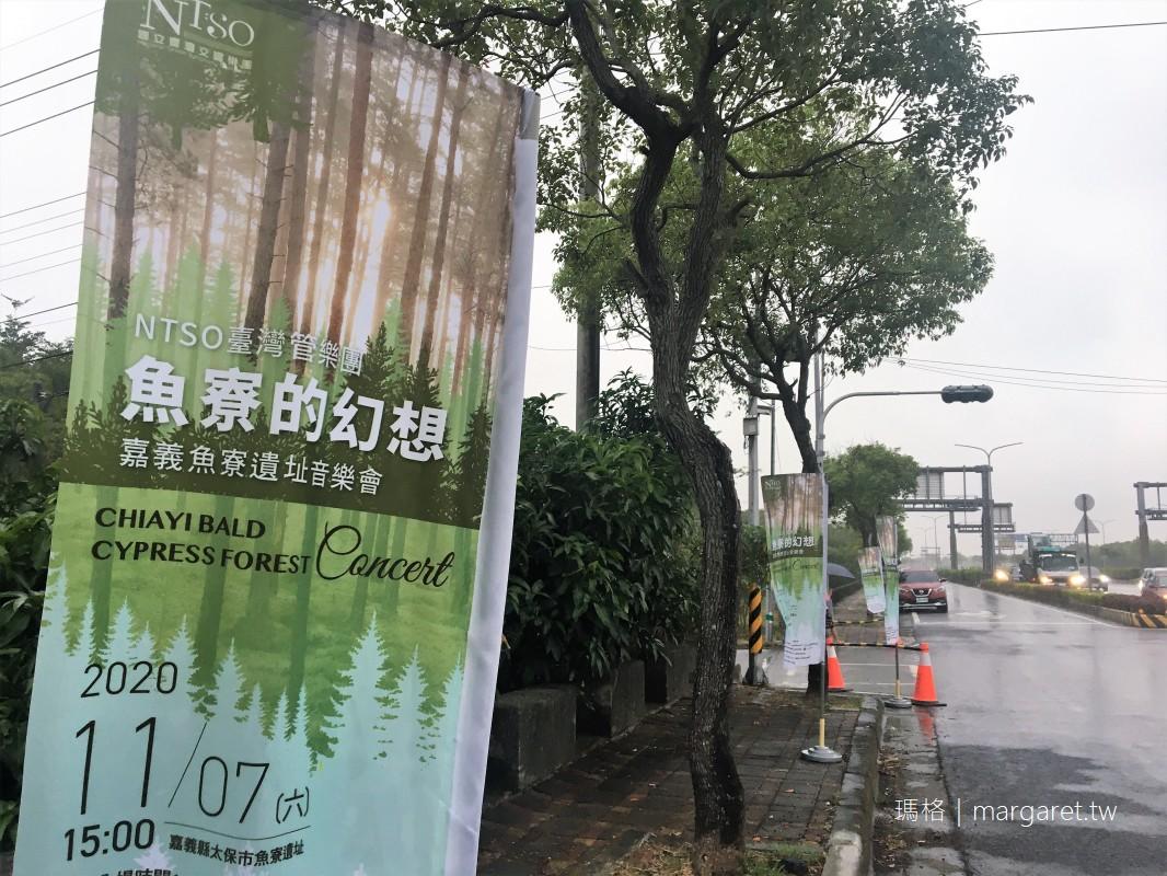 魚寮遺址幻想音樂會。落羽松林鳥鳴唱和|NTSO台灣管樂團