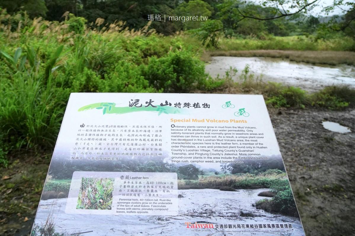宛如仙境。花蓮富里羅山遊憩區|大埤塘、泥火山、羅山瀑布