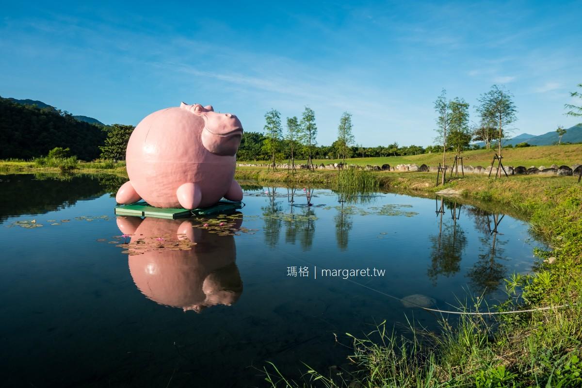 漂浮的粉紅河馬。2021縱谷大地藝術季|台東鹿野新良濕地