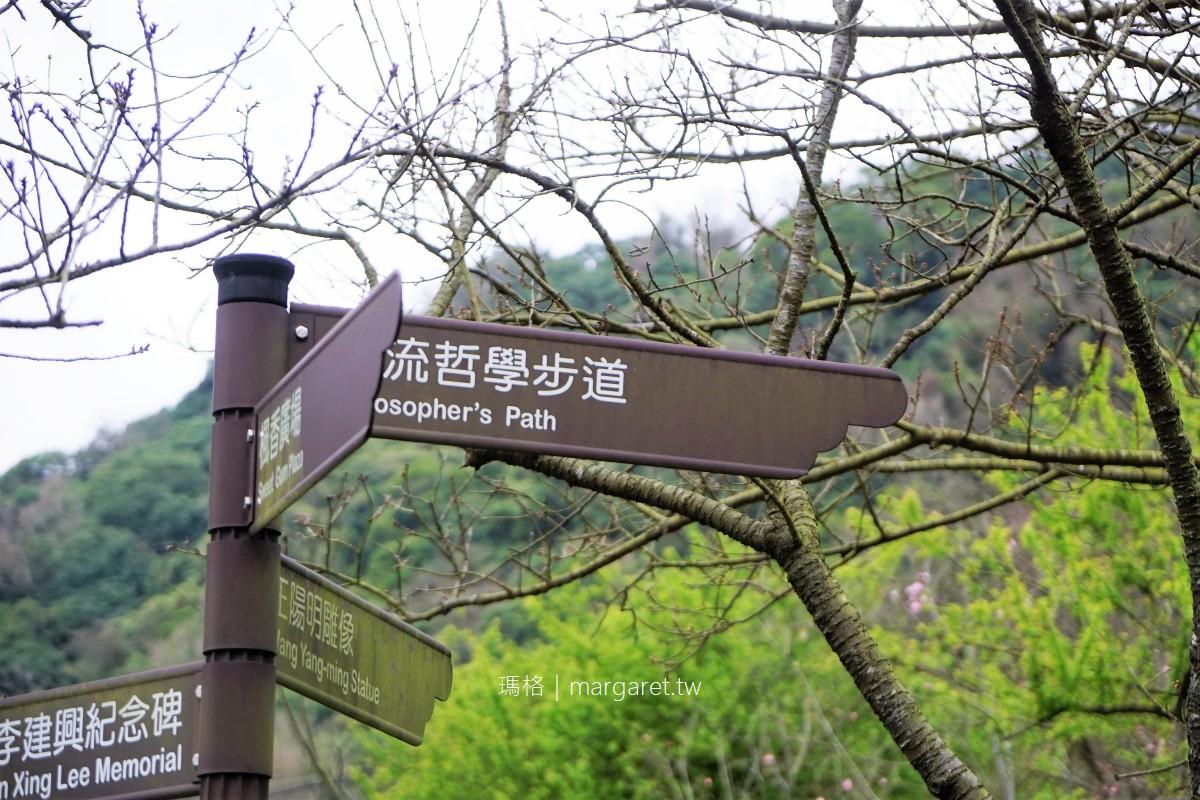 2021陽明山花季|梅花再見、賞櫻開跑  #隊長遊記