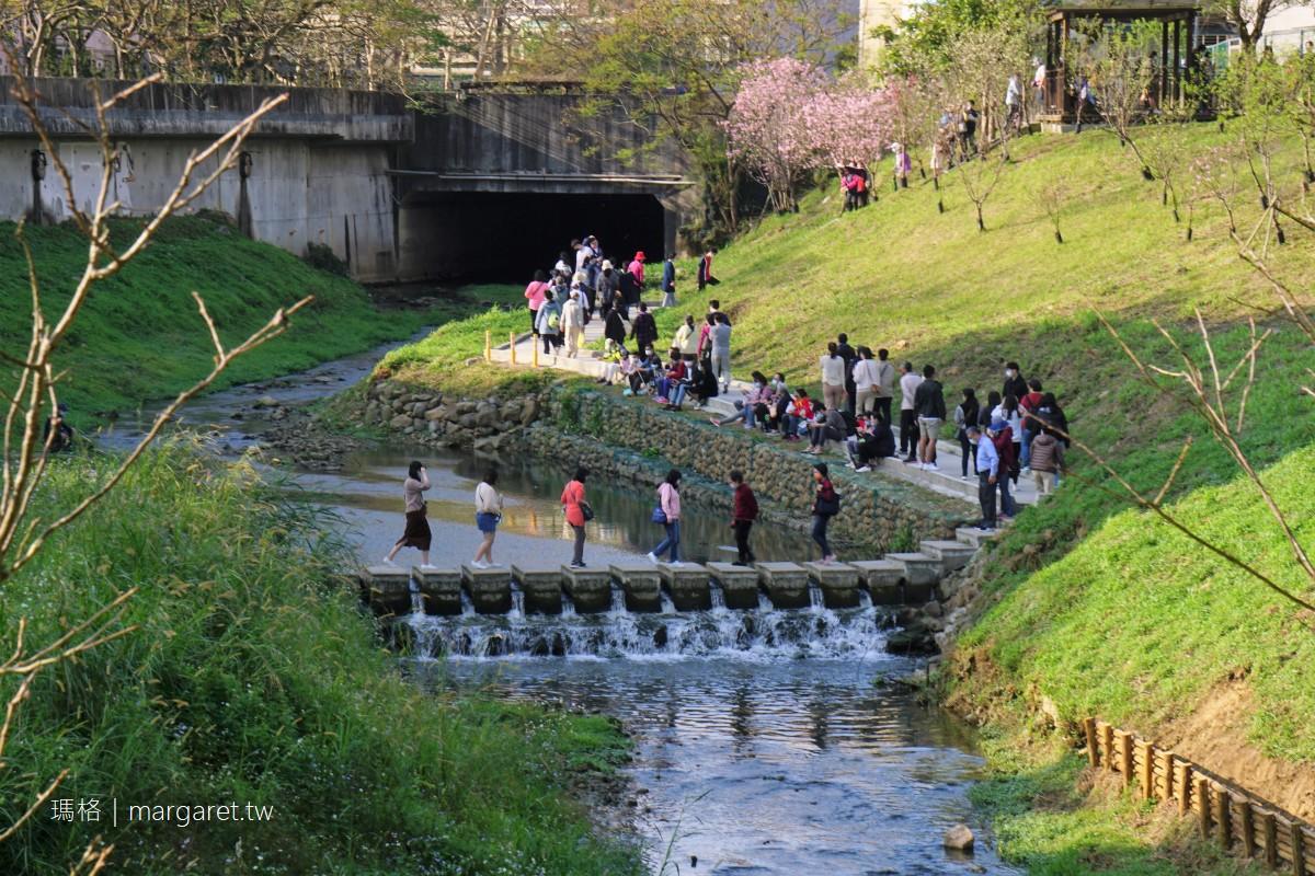 內溝溪自然生態步道。台北內湖賞櫻|走樂康步道到五分埤生態濕地  #隊長遊記