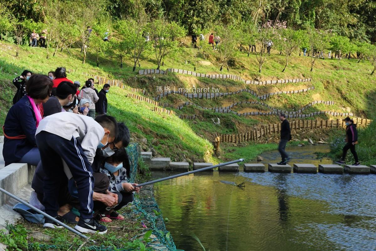 內溝溪自然生態步道。五分埤生態濕地|台北內湖賞櫻景點 #隊長遊記