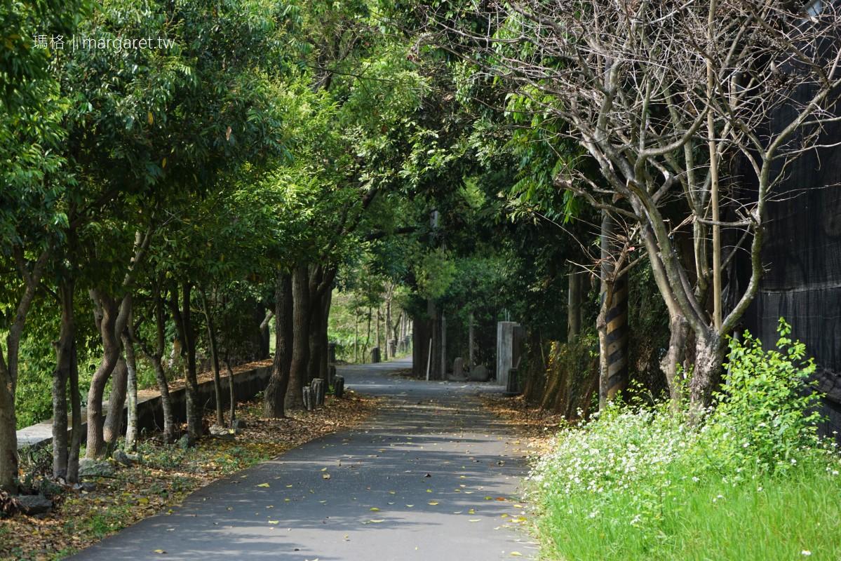 下坪自行車道。沿著街尾溪逍遙遊|南投竹山鎮