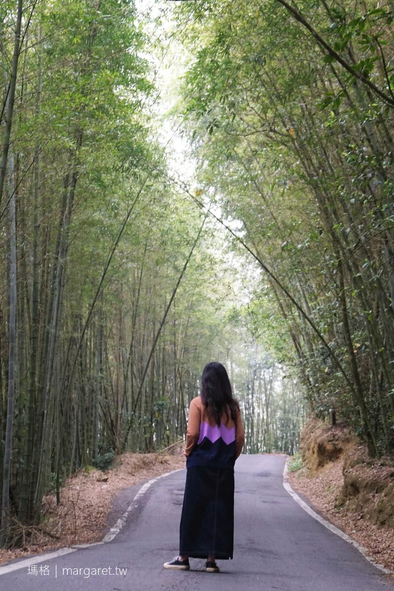梅山龍眼村竹林隧道。從頂尖到二尖|嘉義如夢似幻的高山茶園