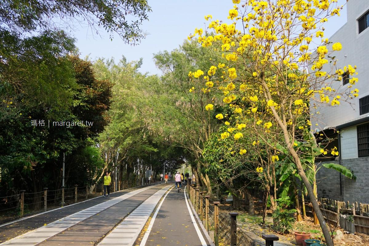 嘉義風鈴木景點9處|洋紅風鈴木。黃金風鈴木