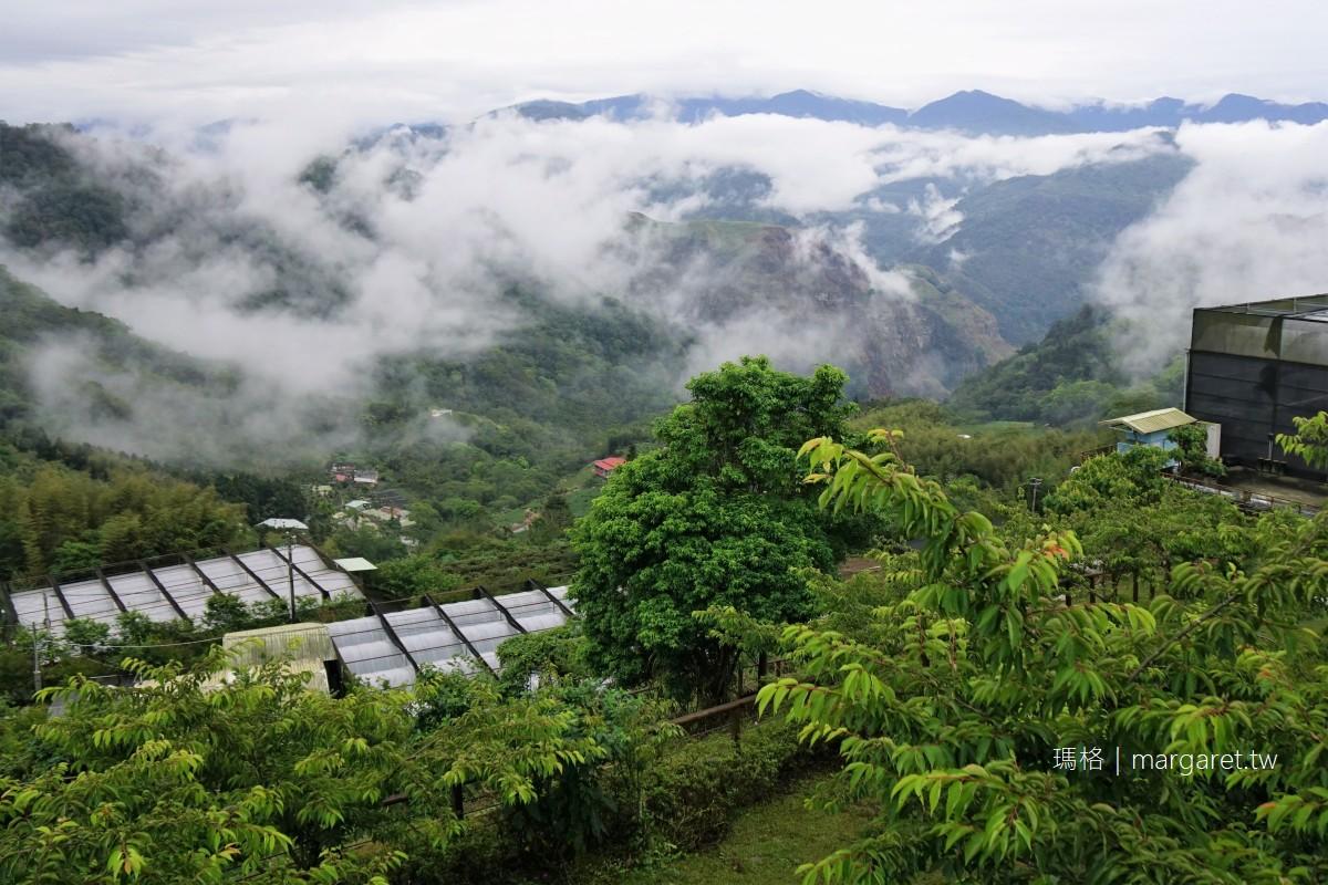 阿里山雲海的故鄉。隙頂象山地鳴|晴時遠眺玉山主峰