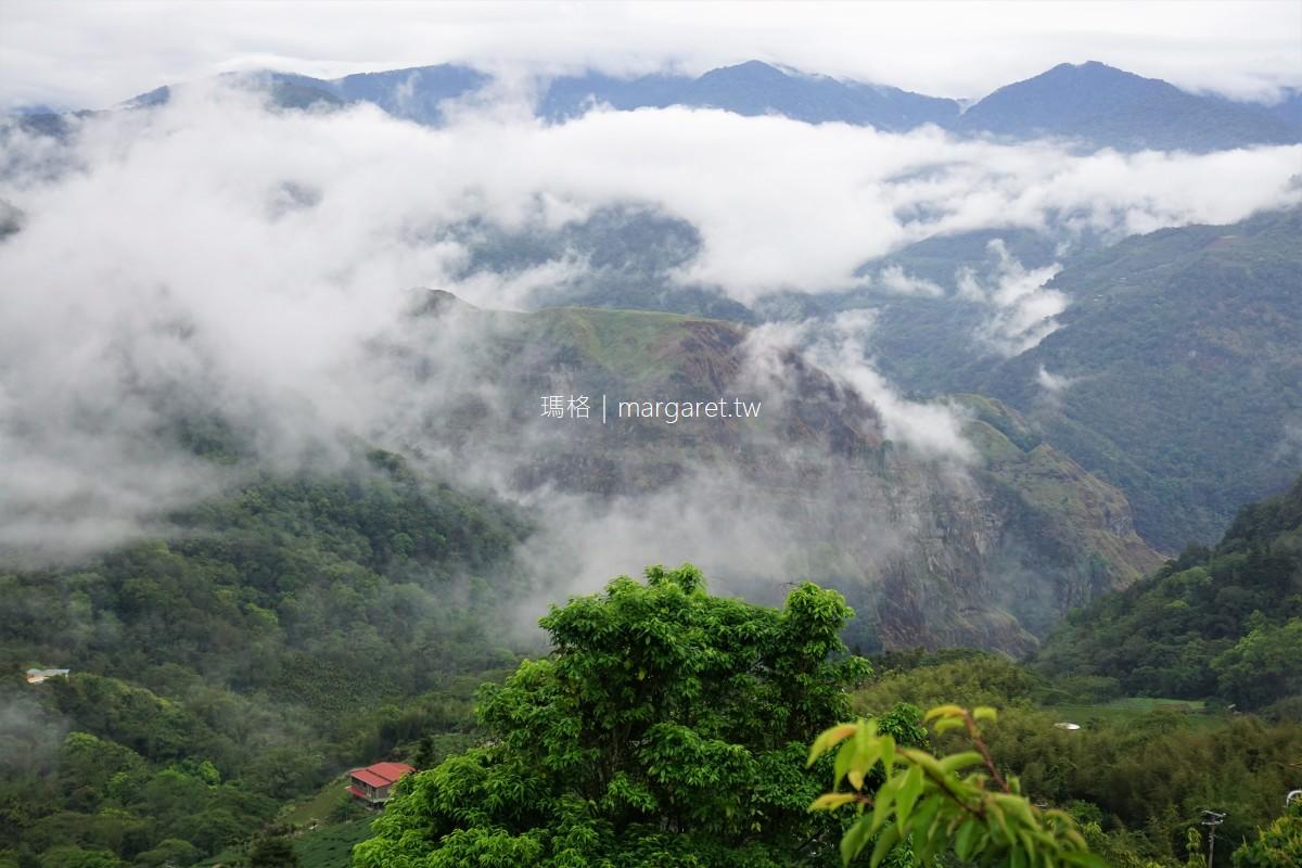 阿里山雲海的故鄉。聽見隙頂象山地鳴|雲瀑茶棧下次見