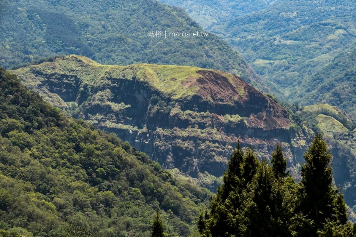 仙井咖啡。從隙頂直視玉山主峰之美|阿里山莊園咖啡耀眼新星