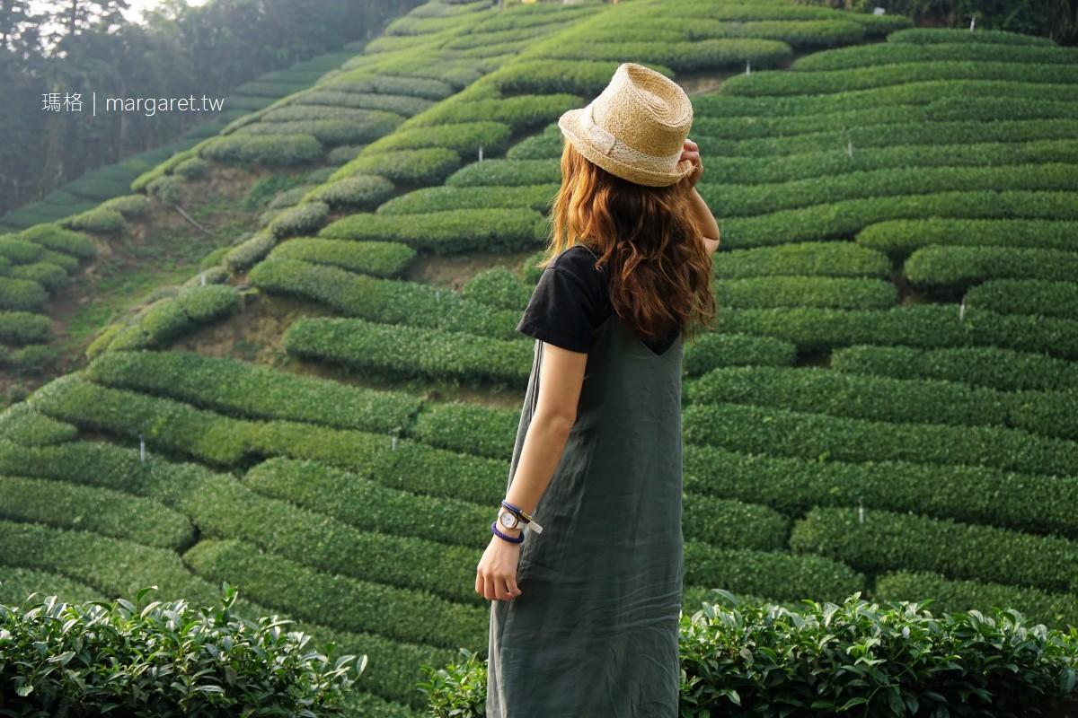 1314觀景台。雲霧繚繞的夢幻波浪狀茶園|遊覽車到不了的嘉義梅山私房景點