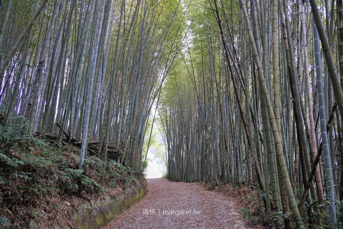瑞里綠色隧道。梅山竹林幽徑|不須比擬京都嵐山,有自成一格的美