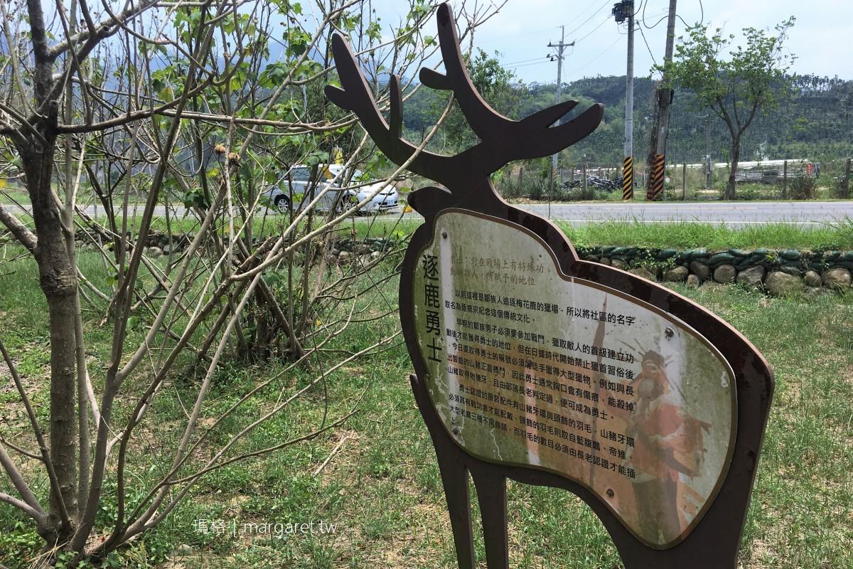 逐鹿部落鳳凰花開。阿里山腳下藝術村|尋找梅花鹿