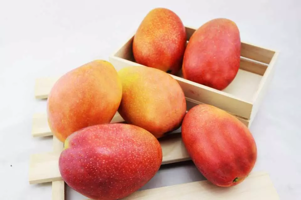 最新推播訊息:台灣頂級水果限量預購!不訂就吃不到了。線上刷卡最方便