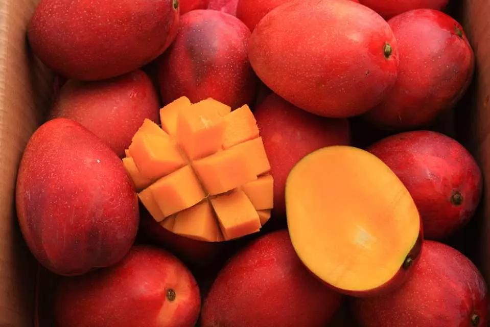 最新推播訊息:一分享就秒殺!想買台灣限量頂級水果,不要遲疑