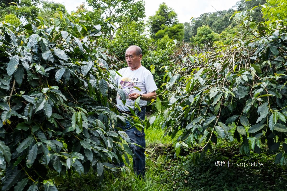 阿里山咖啡之旅。9個部落5條一日遊路線|北緯23.5度的世界水準