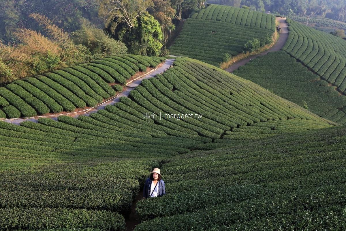 嘉義梅山鄉。茶鄉小鎮食遊|美食。景點。住宿