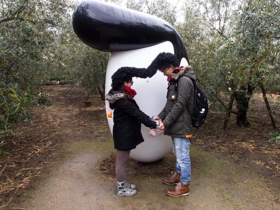 橄欖飛機頭。Regent in Olives|小豆島No. sd25。瀨戶內國際藝術祭2019