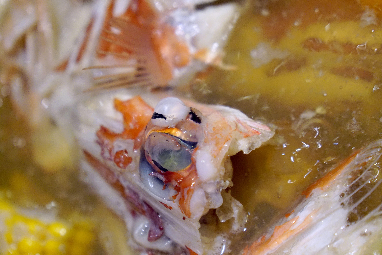 里海咖啡。礁溪必訪|秋冬限定螃蟹漁夫鍋上市 (2018.10.31更新)