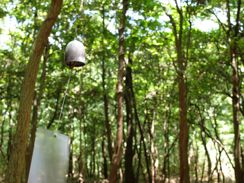 檀山頂上展望台。豐島制高點|森林低語La forêt des murmures