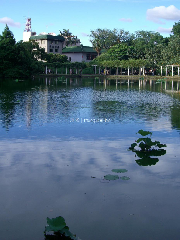 台北植物園。城市裡的一方幽靜|看完米勒展之後