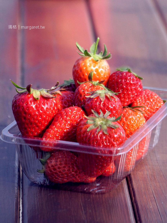 德島草莓大餐吃到飽|用鳴門牡蠣貝殼粉種出來的漩渦草莓放題|海景法式buffet午餐女孩兒最愛 @瑪格。圖寫生活