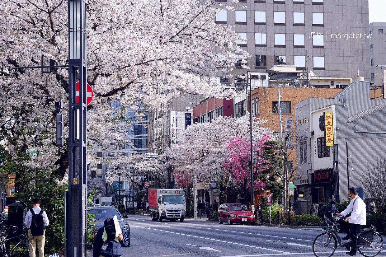 日本橋。人形町|路過櫻花盛開的日常