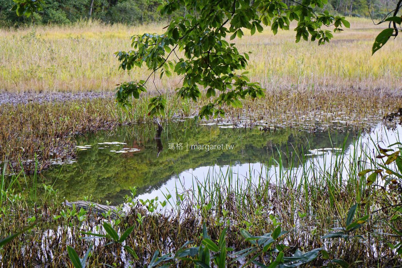 矢野原濕地(矢ノ原湿原)。8萬年古沼澤紅葉秘境|福島昭和村自然保護區