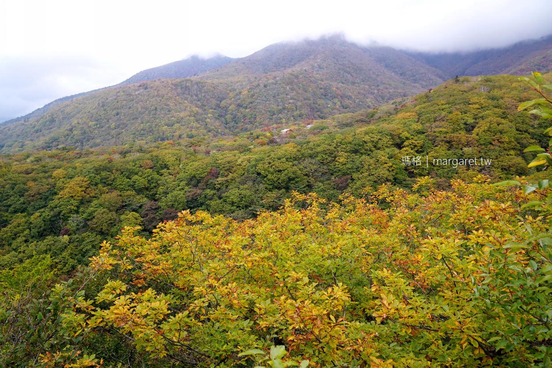 駒止之瀧。馬兒看了也停步的美|栃木碧藍名瀑紅葉絕景