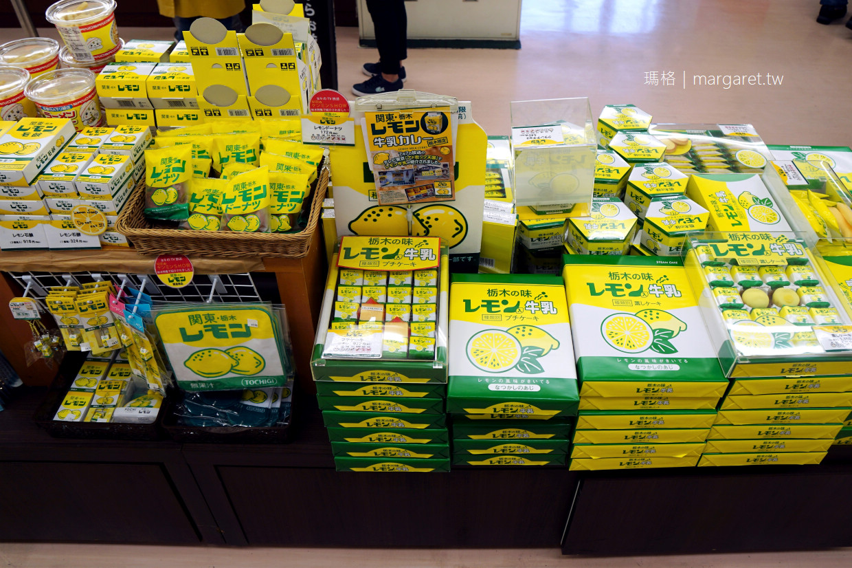 東京近郊巴士一日遊。旺季更方便的選擇|日光東照宮。中襌寺湖。華嚴瀑布。鬼怒川溫泉