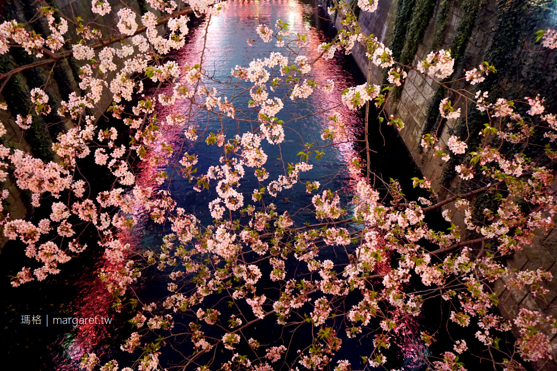 東京賞櫻10選。2020日本賞櫻最新預測情報|花見野餐。夜櫻食尚(2020.2.21新)