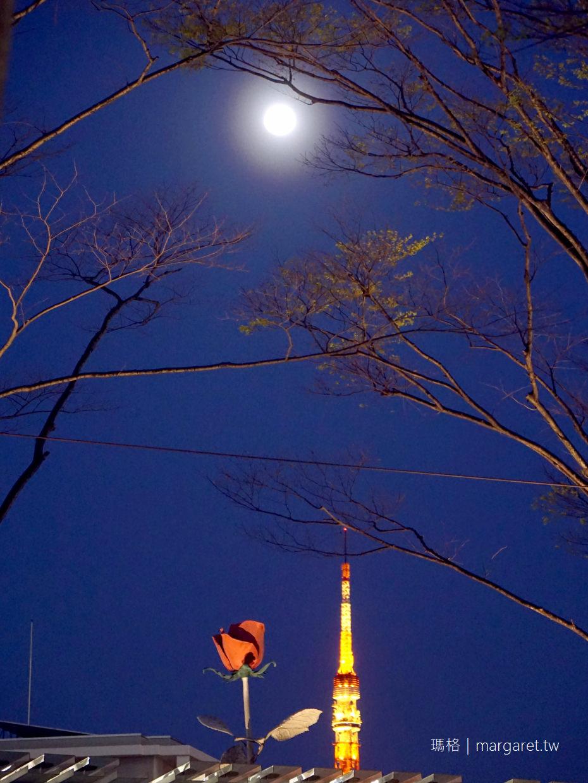 六本木之丘。毛利庭園夜櫻|櫻花、東京鐵塔、金色之心同框 @瑪格。圖寫生活
