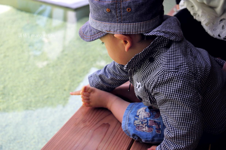 The water。三分一博志|2019瀨戶內國際藝術祭。直島本村新作品