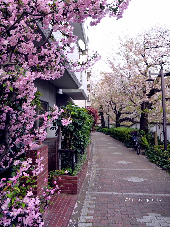 都電荒川線。東京櫻花路面電車Tokyo Sakura Tram|沿著神田川櫻並木散步道,到早稻田大學喝咖啡 @瑪格。圖寫生活