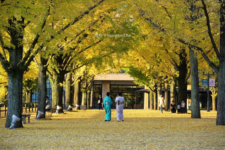 熊本銀杏名所。縣廳前夢幻金隧道|交通方式