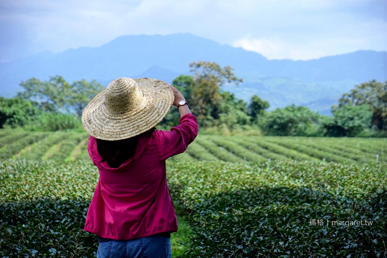 女兒不懂茶。鹿野紅烏龍|台東茶園二代新創品牌。限量冠軍茶禮盒