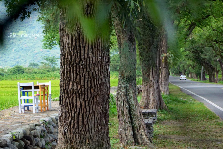 武陵綠色隧道。台東2626市集|樟樹、木麻黃夾道歡迎