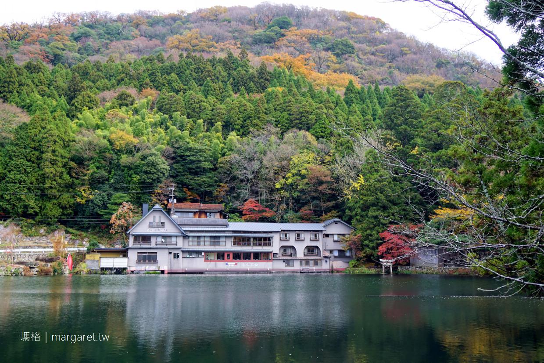金鱗湖紅葉之美|由布院半日遊。天祖神社水中鳥居