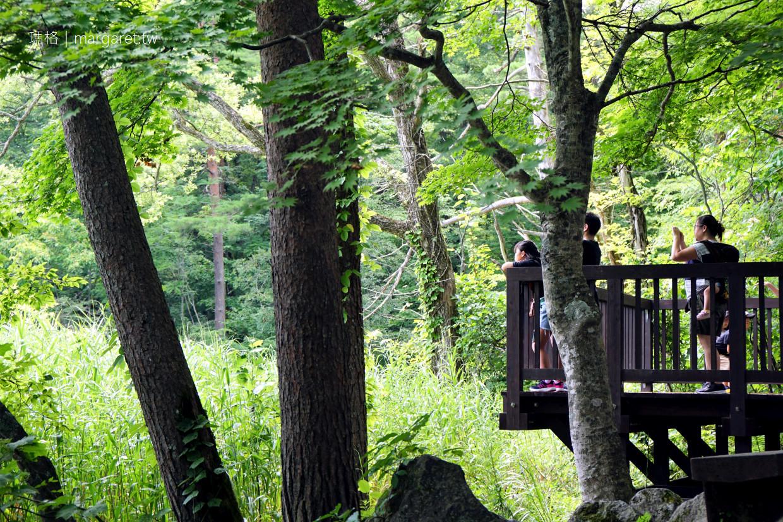 五色沼。弁天池夢幻的Tiffany藍|福島磐梯高原絕景