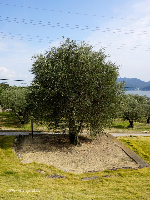 小豆島橄欖公園。千年橄欖樹|米洛斯風車飛天魔女。愛麗絲夢遊仙境橄欖起源之書 (二訪更新)