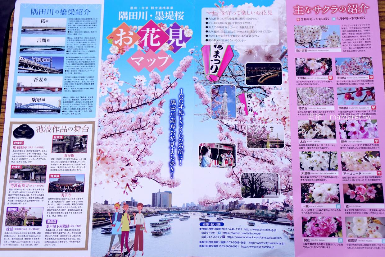賞櫻名所。隅田公園|走進東京市民的櫻花野餐派對