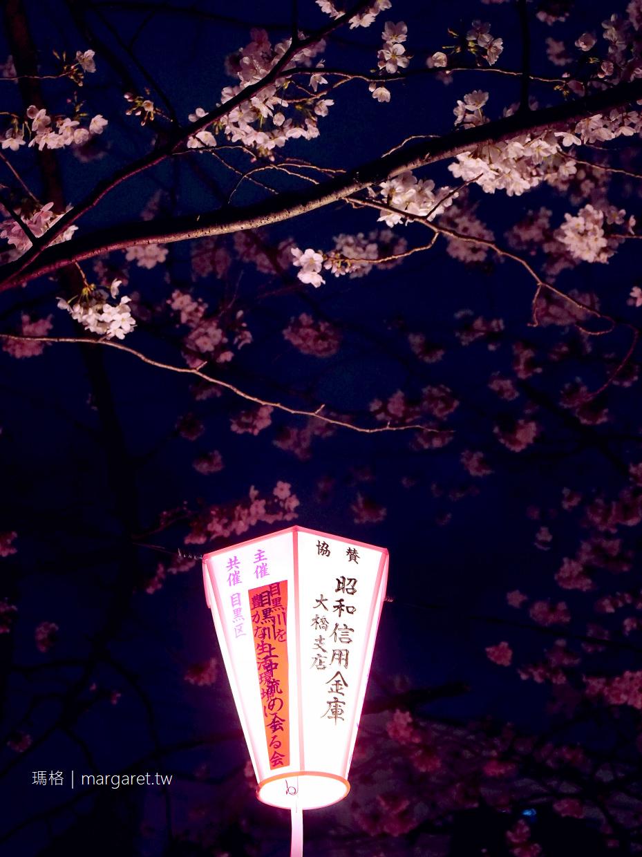 目黑川夜櫻(滿開)。3/24點燈了|從人潮少的池尻大橋開始逛|東京賞櫻 @瑪格。圖寫生活